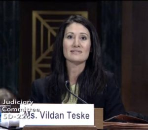 vildan-testifying-in-senate